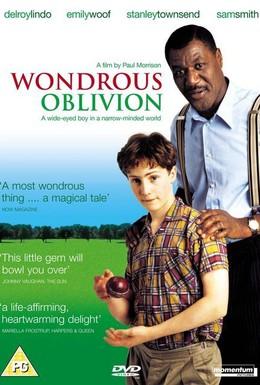 Постер фильма Удивительная забывчивость (2003)
