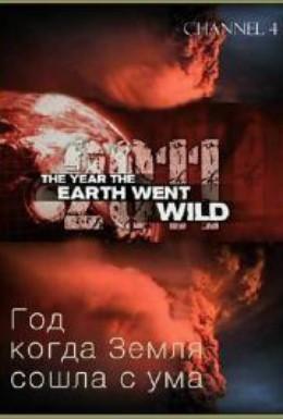 Постер фильма Год, когда Земля сошла с ума (2011)