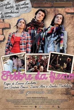 Постер фильма Сенная лихорадка (2010)