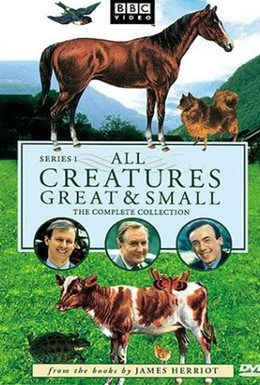 Постер фильма Все существа, большие и малые (1978)