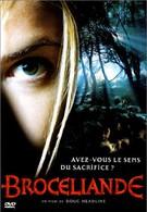 Братство друидов (2003)