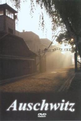 Постер фильма Аушвиц: Забытые доказательства (2004)
