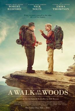 Постер фильма Прогулка по лесам (2015)