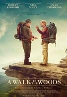 Прогулка по лесам (2015)