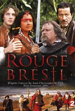 Постер фильма Красный цвет Бразилии (2013)