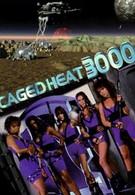 Тюрьма 3000 года (1995)