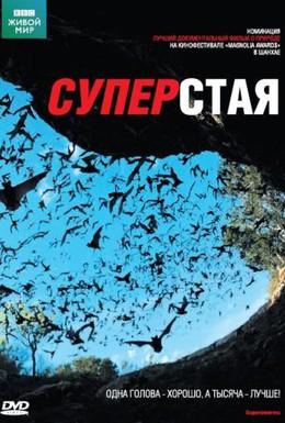 Постер фильма BBC: Суперстая (2009)