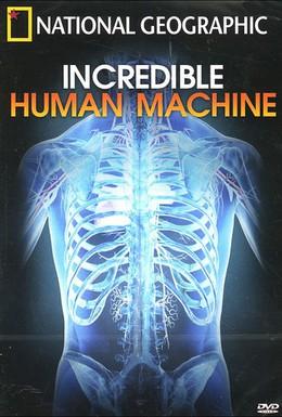 Постер фильма Невероятное тело человека (2007)