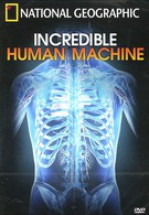 Невероятное тело человека (2007)