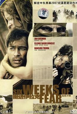 Постер фильма Шесть недель страха (2006)