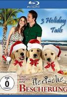 Три рождественские сказки (2011)
