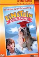 Завтрак с Эйнштейном (1998)
