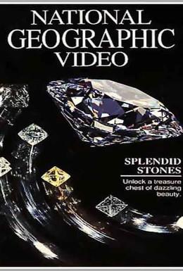 Постер фильма National Geographic: Удивительные камни (1991)