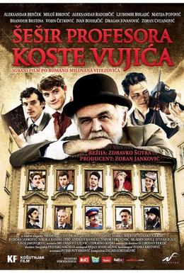 Постер фильма Шляпа профессора Вуйича (2012)