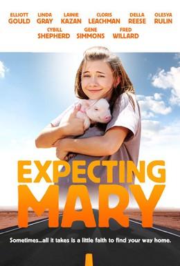 Постер фильма Надежды и ожидания Мэри (2010)