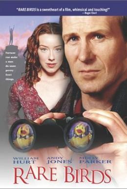 Постер фильма Редкие птицы (2001)