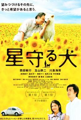 Постер фильма Пес, смотрящий на звезды (2011)