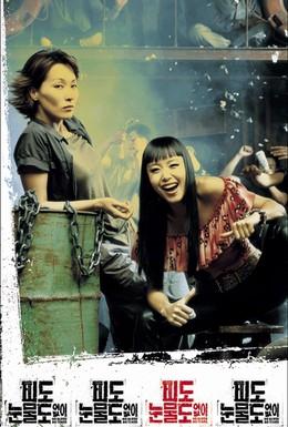 Постер фильма Ни крови, ни слез (2002)