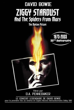 Постер фильма Зигги Стардаст и пауки с Марса (1973)
