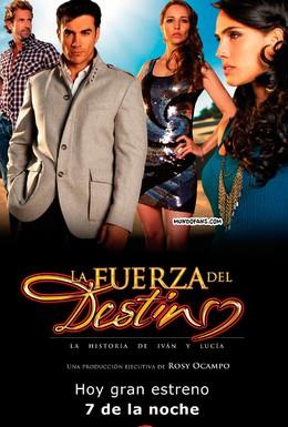 Постер фильма Сила судьбы (2011)