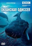 BBC: Океанская одиссея (2006)