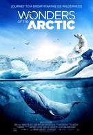 Чудеса Арктики (2014)