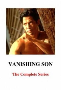 Постер фильма Исчезающий сын 2 (1994)