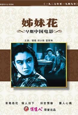 Постер фильма Сестры-близнецы (1934)