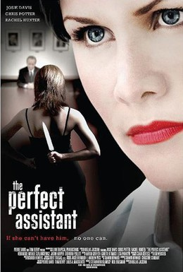 Постер фильма Само совершенство (2008)