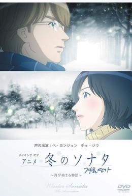 Постер фильма Зимняя соната (2009)