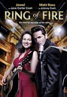 Кольцо огня (2013)