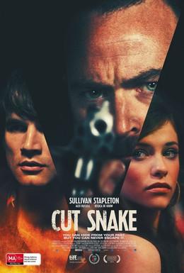 Постер фильма Раненый змей (2014)