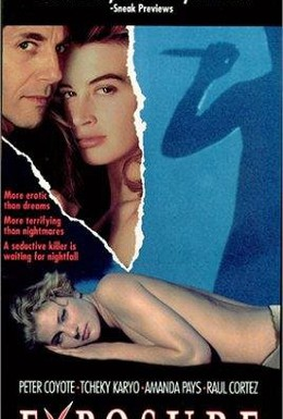 Постер фильма Высокое искусство (1991)