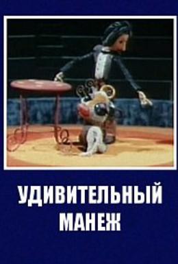 Постер фильма Удивительный манеж (1979)