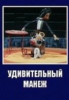 Удивительный манеж (1979)