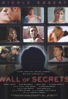 Таинственная стена (2003)
