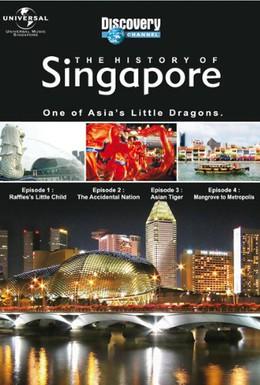 Постер фильма История Сингапура (2005)