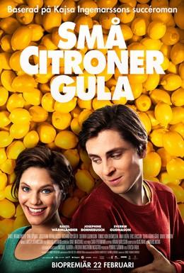 Постер фильма Любовь и лимоны (2013)