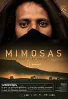 Мимозы (2016)