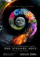 Неизвестная планета Земля (2018)
