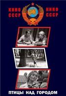 Птицы над городом (1974)