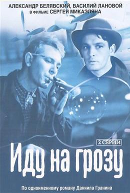 Постер фильма Иду на грозу (1966)