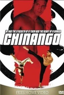 Постер фильма Удар тигра (2009)