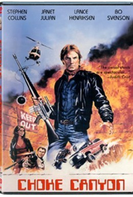 Постер фильма Опасная территория (1986)