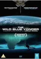 Далекая синяя высь (2005)