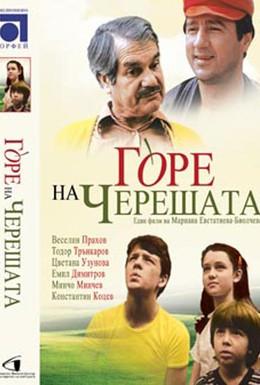 Постер фильма В ветвях черешни (1984)