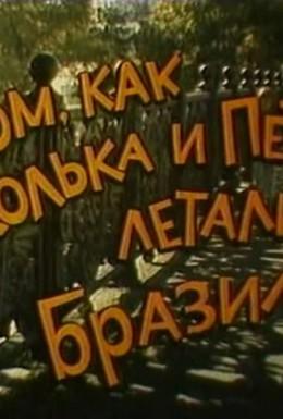 Постер фильма О том, как Колька и Петька летали в Бразилию (1998)