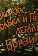 О том, как Колька и Петька летали в Бразилию (1998)