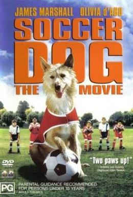 Постер фильма Король футбола (1999)
