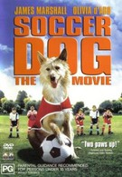 Король футбола (1999)